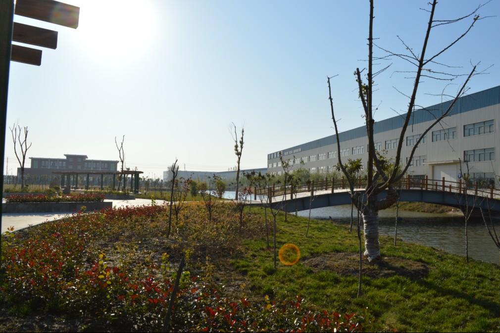 Plant green landscape